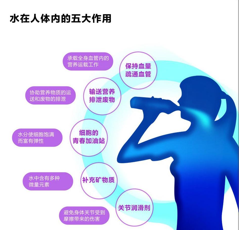 水在人体的作用